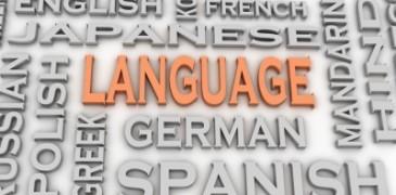 languages cada centavo conta
